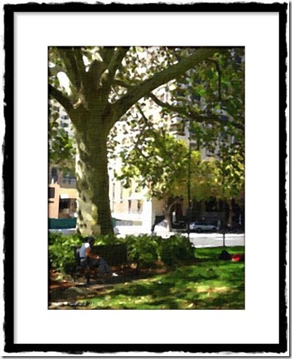FotoSketcher - CIMG4030